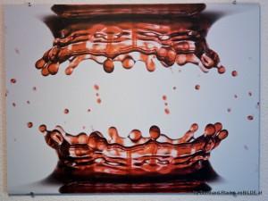 Prentu-Alu-Acryl-by-Bernhard_Plank-imBILDE_at (20)
