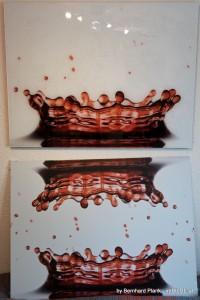 Prentu-Alu-Acryl-by-Bernhard_Plank-imBILDE_at (23)