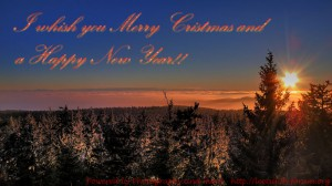 merry_x-mas_and_a_happy_new_year_english800-1-by-Bernhard_Plank-imBILDE_at